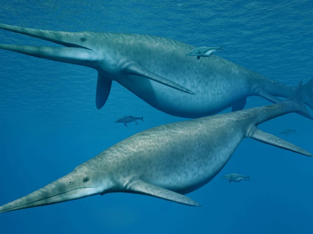 Heilige Scheiße, diese Triassic Ocean Reptiles waren so verdammt groß <em></em>