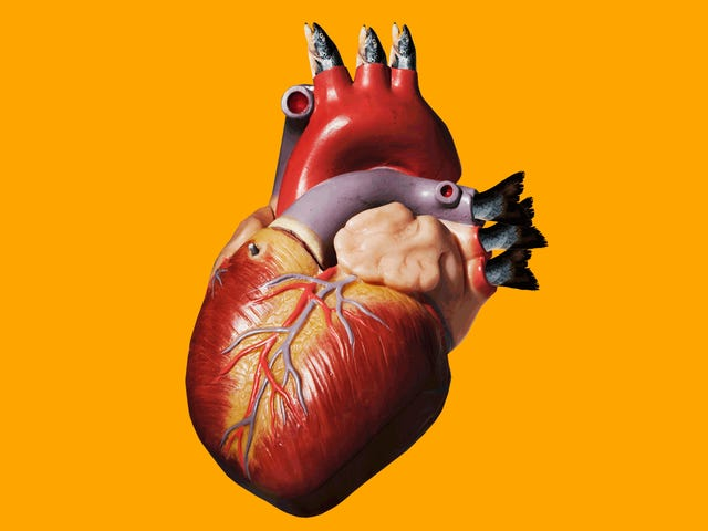 Omega-3s Aren't So Great For Your Heart After All