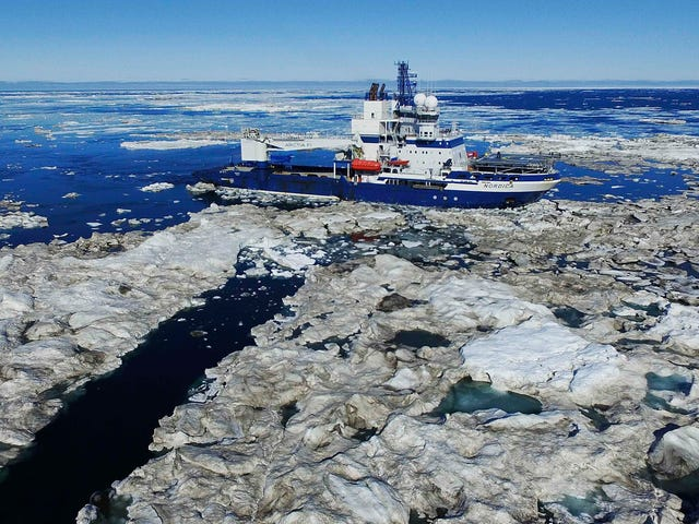 Trump Pushes Forward With an Arctic Drilling Plan Courts May Rule Illegal