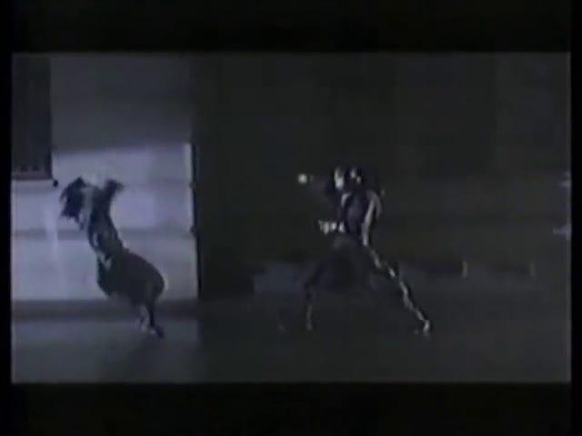 Late TAY Retro: Famicom |  Ninja Gaiden |  Tv-reklame (JP)