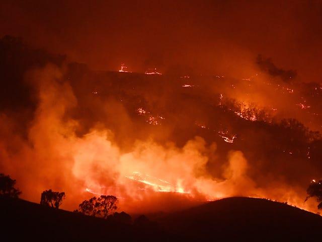 Los incendios forestales están 'borrando la memoria cultural' de los pueblos aborígenes de Australia