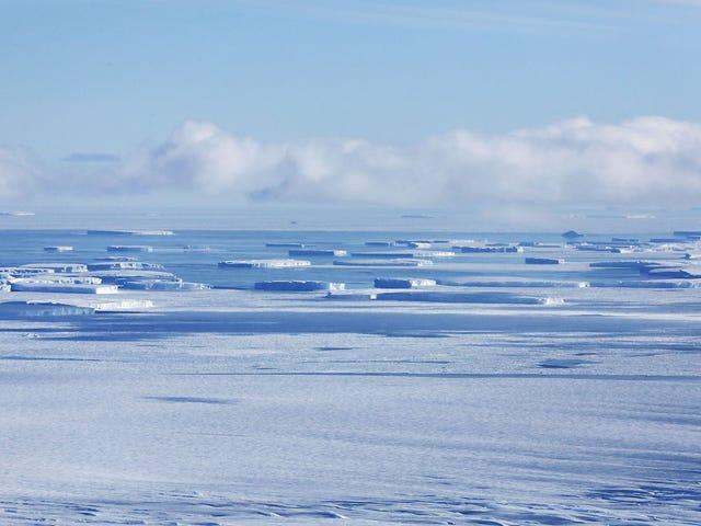 ฉันคิดว่าอึจริง ๆ แล้วกดปุ่มพัดลมในทวีปแอนตาร์กติกา