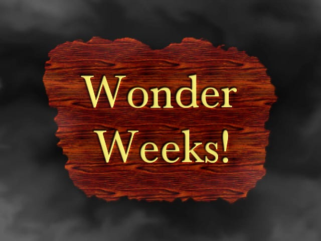 "Dadhacker - Are You Having A ""Wonder Week""?"