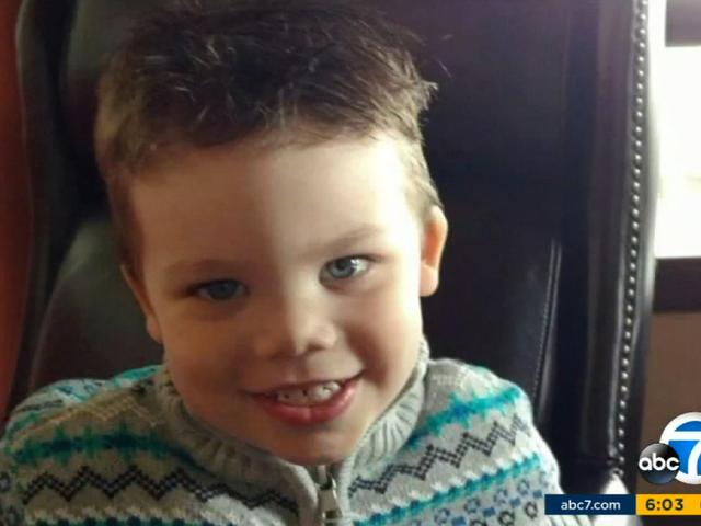 Cuerpo de niño de 2 años de edad arrastrado lejos por Alligator en Disney World Resort es recuperado