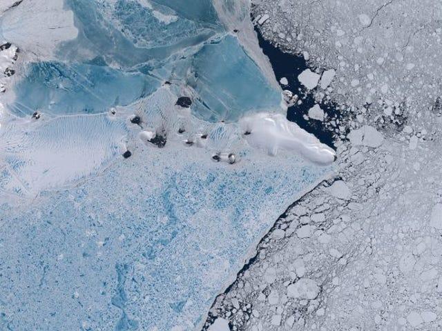 """""""Es como si estuvieran tocando una flauta"""": científicos descubren un extraño sonido en la plataforma de hielo antártico"""