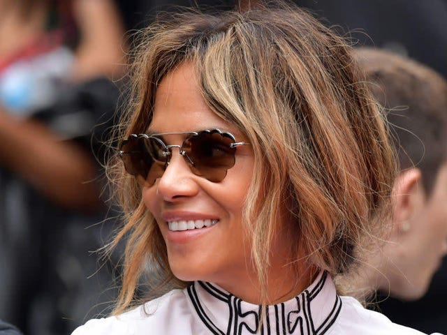 A Man Was Arrested While Trying to Steal Halle Berry's House