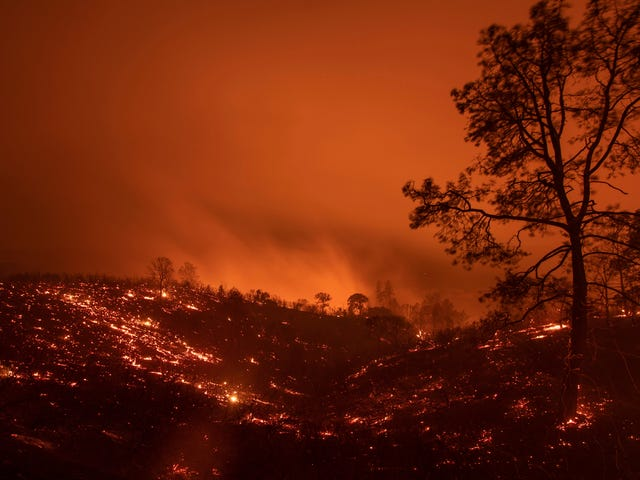 California Wildfire Is Now Largest in the State's History