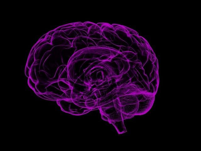 Ahli-ahli sains ini ingin mendefinisikan semula Alzheimer sebagai Penyakit 'Double-Prion'