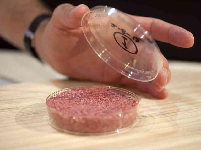 Would you pay $9 for a lab-grown burger?