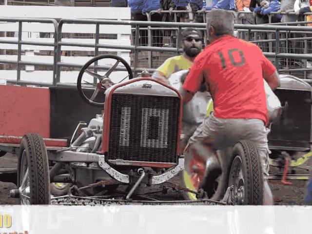 Der er en Model T Race med grise som Co-Drivers, på grund af kurs der er