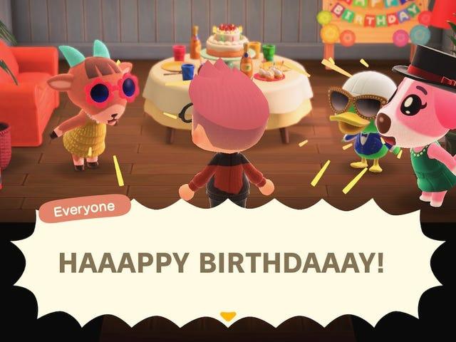 感谢可爱的生日聚会,动物穿越朋友