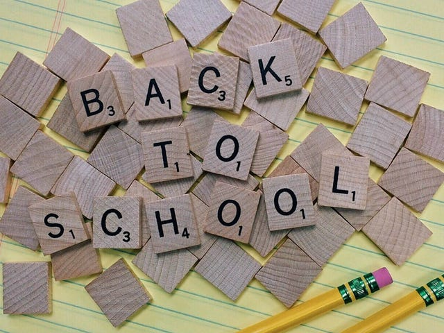 Everything You Need to Survive Back-to-School Season