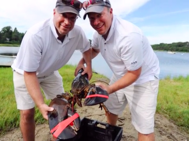 Majestic 22-Pound Lobster Dies After Being Released Into the Wild by Clueless Humans
