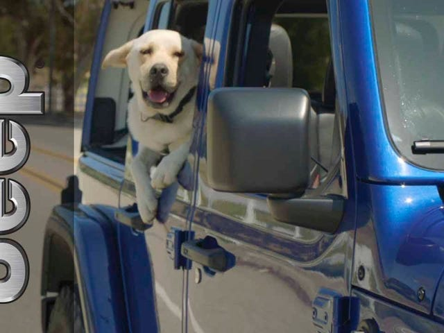 Every Jeep commercial should include a dog