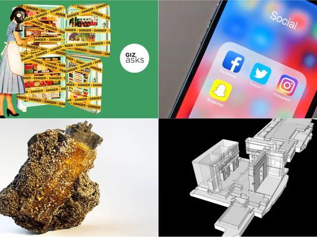 Les futurs fossiles, le monde natal de Thanos et la nourriture la plus dangereuse: meilleures histoires de la semaine au format Gizmodo