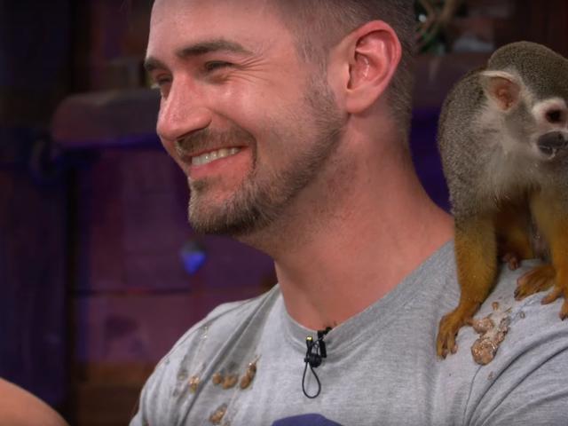 Monkey Pukes sobre el desarrollador durante la transmisión en vivo de Sea of Thieves