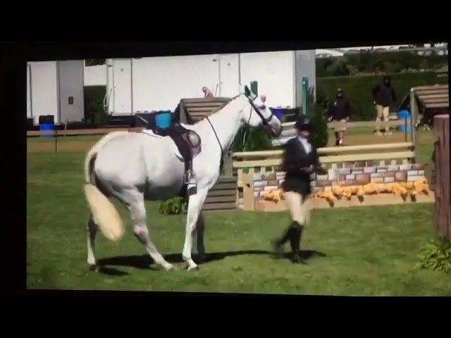 Αυτή η γαμημένη κληρονόμος ξεκίνησε το άλογό της!