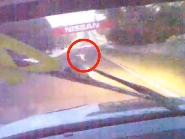 Παρακολουθήστε Αυτή η BMW χτύπησε ένα κακό μικρό καγκουρό κατά τη διάρκεια του Bathurst 12 ώρες