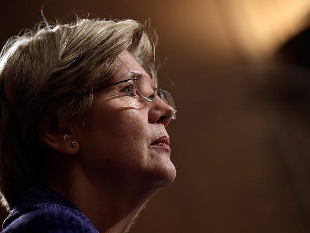 'Definisi Korupsi': Warren Panggilan Daripada Jawatankuasa Penasihat FCC Ditimpa oleh Suapan Korporat