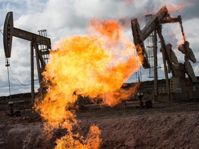 Es oficial: 'Freedom Gas' es la peor frase del año