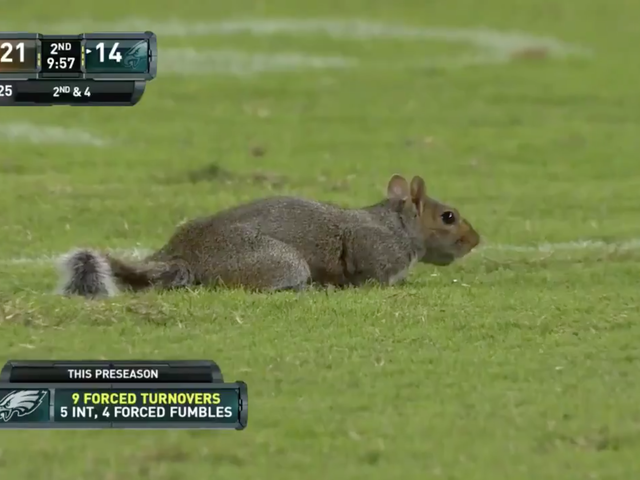 Τώρα, εδώ είναι κάποια δράση NFL Action Preseason