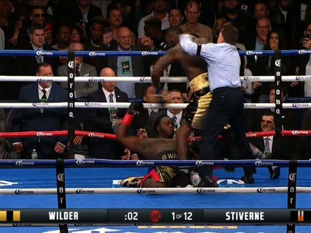 Deontay Wilder Obliterates Bermane Stiverne In Rematch
