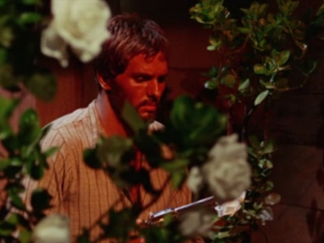 The Gunfighter Lost in the Flowers
