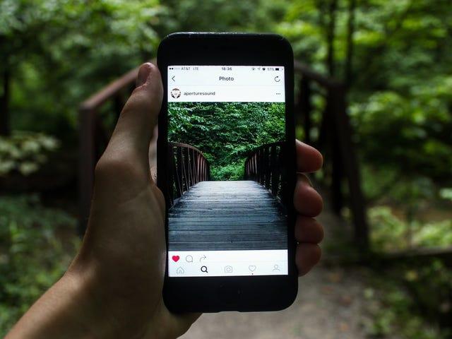 Cara Go Incognito di Instagram