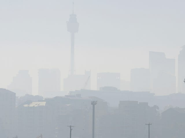 Sydney Choked in Smoke as Wildfires Rage in New South Wales