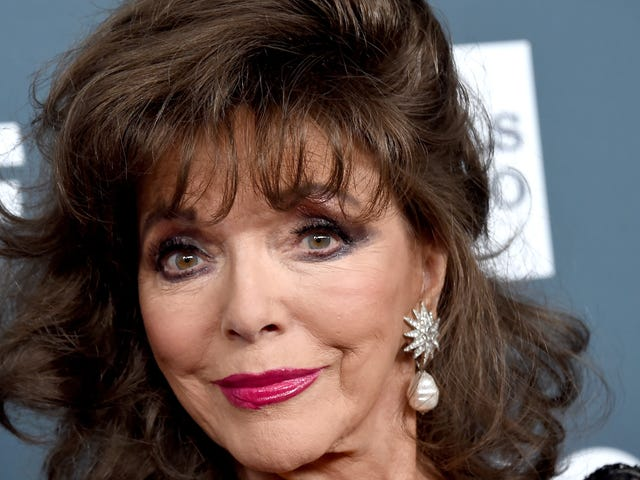 Joan Collins Believes a Friendly 'Little Fly' Might Be Jackie Collins Reincarnated