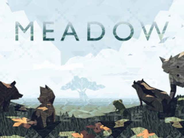 Meadow: a Steam Review