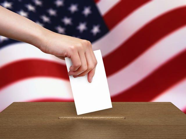 Ich werde heute abstimmen gehen