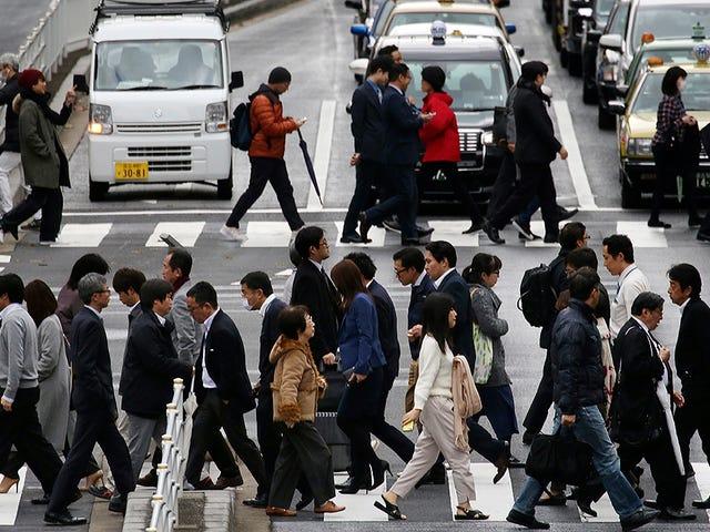 Udlejningsfirmaerne i Japan har opdaget, at deres kunder ikke kører de biler, de lejer