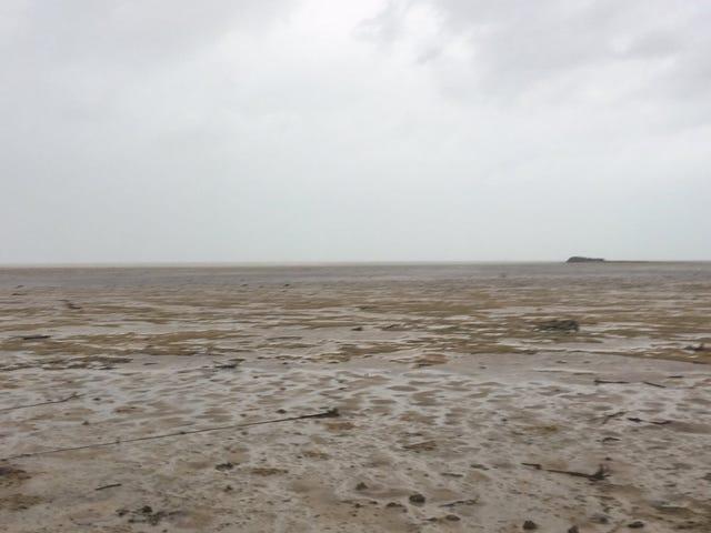 Por qué ha desaparecido el mar de la costa tras el paso del huracán Irma