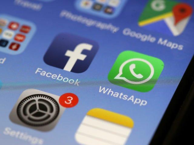 La BBC se joint à Google, Facebook et Twitter pour tenter de lutter contre la désinformation en ligne