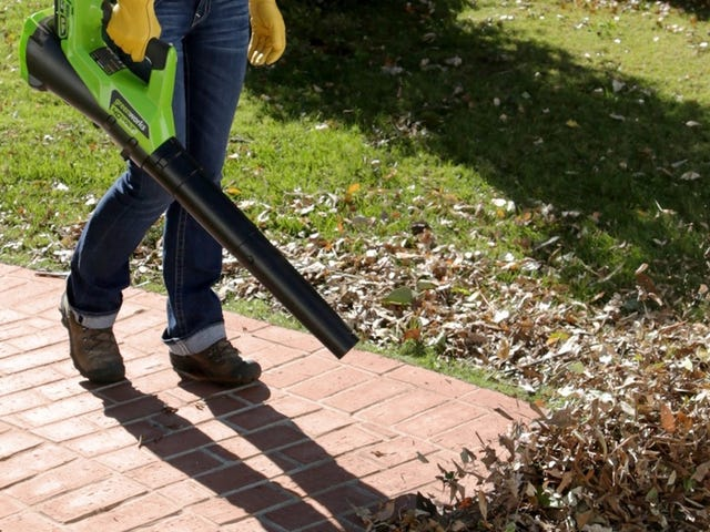 Gear Up For Fall With This GreenWorks Leaf Blower Gold Box