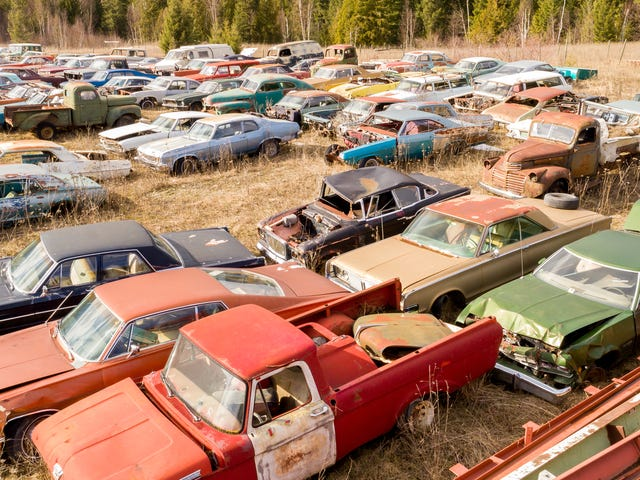 This Secret 340-Car Collection In Canada Is Up For Grabs