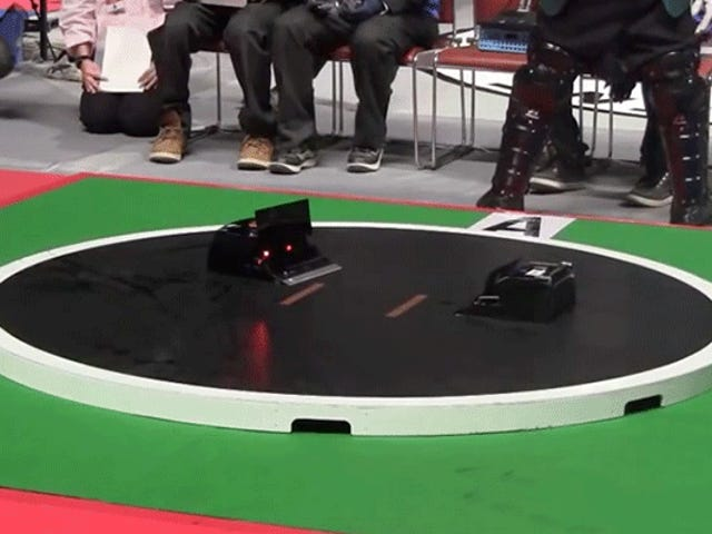Robot Sumo Wrestling Is Super Intense