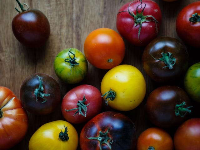 Seeding Tomatoes is a Waste of Time (And Flavor)