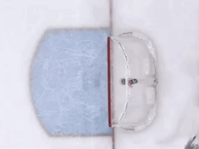 Cam Ward Had A Real Bizarre Own Goal