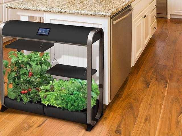 Feed An Entire Family With the Sprawling AeroGarden Farm, Now $150 Off
