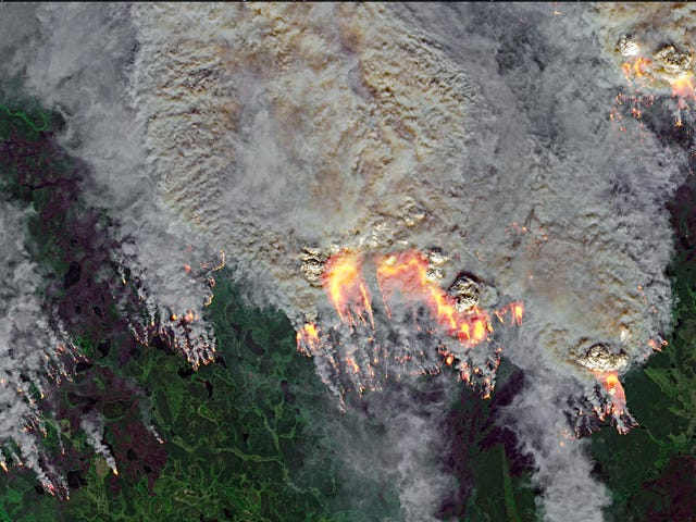 Arctic Wildfires Have Never Released This Much Carbon Dioxide