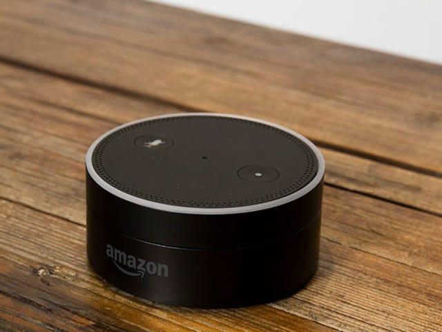 El mejor lugar para su Echo Dot está realmente en el techo