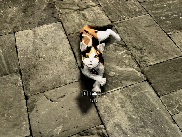 Five Skyrim and Fallout Mods That Fix Obvious Cat Problems