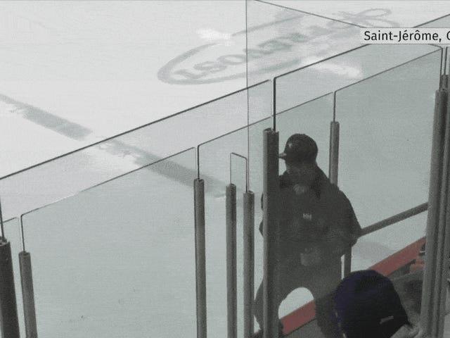 Racistiske fans tvinge Quebec Hockey Player til at forlade spillet tidligt med familien
