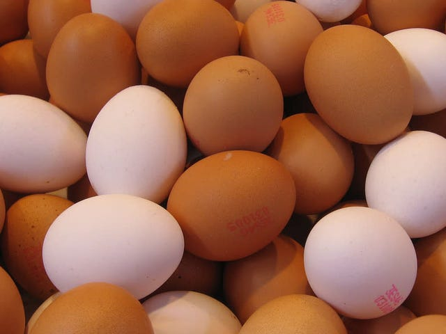 Throw Out These Potentially Salmonella-Tainted Eggs Immediately