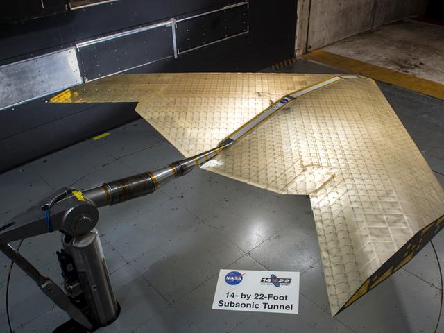 NASA i MIT chcą samolotów, które latają bardziej jak ptaki