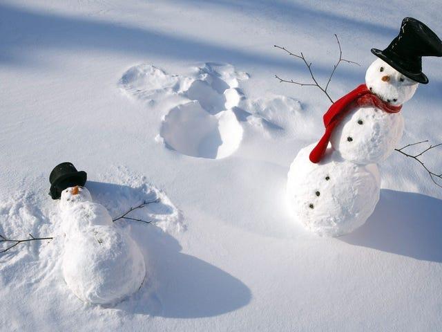 สนุกกับหิมะ
