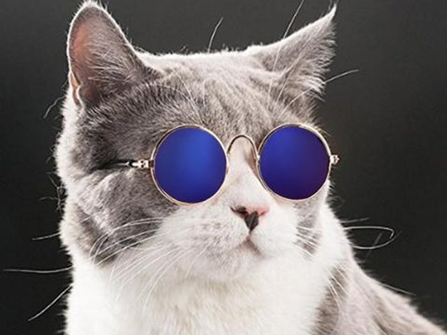 Lovely Pet Cat Glasses Dog Glasses Pet Products