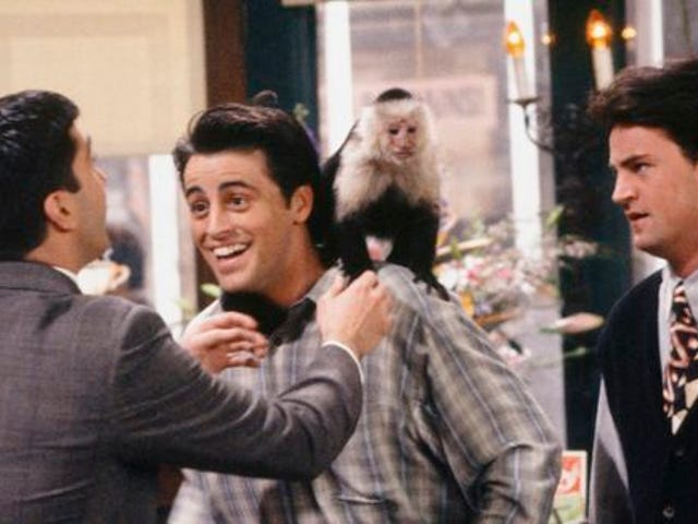 """""""She was always biting us"""": 6 TV pets hated by their castmates"""